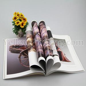 Magazine Catalog Printing Service