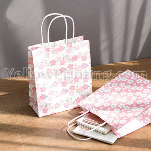 Kraft Paper Bag With White Paper Twisted Handle