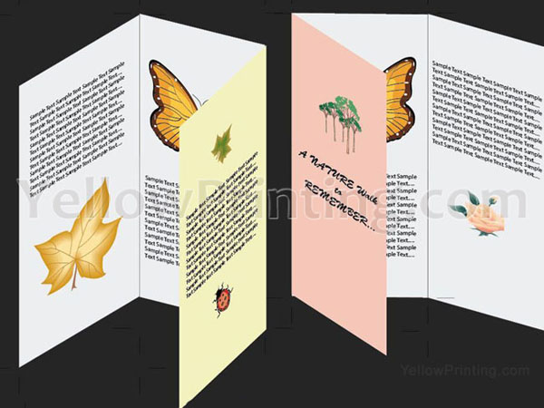 Make a Brochure in Adobe Illustrator